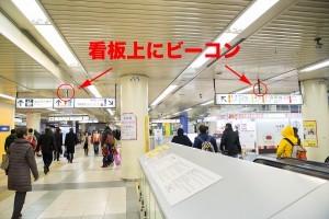 tokyostguide_05-300x200