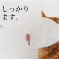 暴れん坊猫の爪切り攻略アイテム!本気の猫グッズ通販